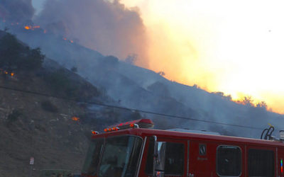 LAFD Brush Clearance Requirements